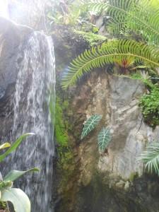 wterfall myriad gardens